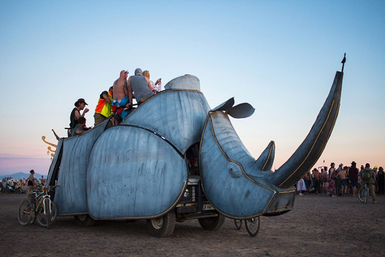 Afrika Burn 2019 Rhino Art Car photo by Arash Afshar